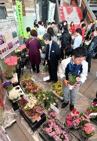 栃木県庁で県産花き販売 バラやアジサイ…