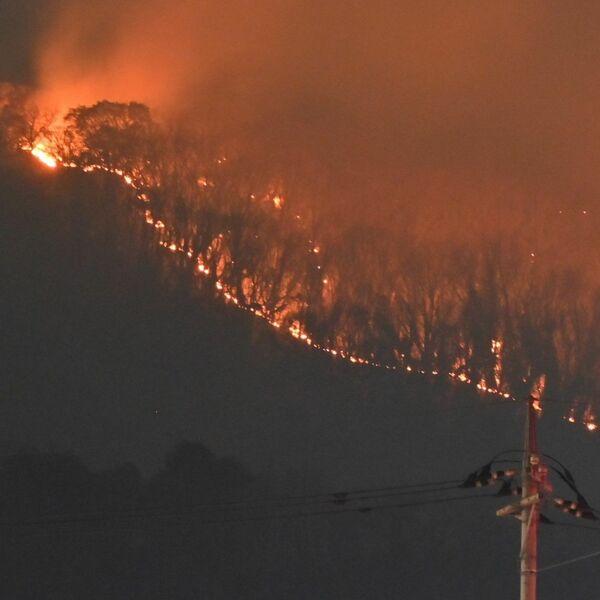 山 現在 足利 火事