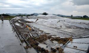台風19号】農業被害39億8千万円 イチゴ深刻、全体の5割 栃木県内 ...